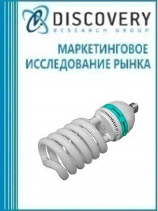 Маркетинговое исследование - Бизнес-план (экономическое обоснование) организации производства компактных люминесцентных ламп