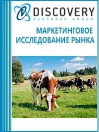 Анализ рынка скотоводства и мяса крупного рогатого скота в России (с предоставлением базы импортно-экспортных операций)