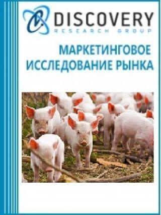 Анализ рынка свиноводства в России (с предоставлением базы импортно-экспортных операций)