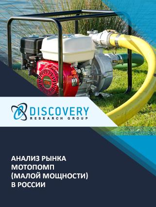 Маркетинговое исследование - Анализ рынка мотопомп (малой мощности) в России (с предоставлением базы импортно-экспортных операций)