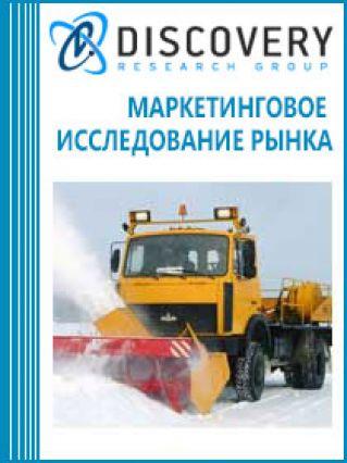 Маркетинговое исследование - Анализ рынка техники снегоуборочной в России